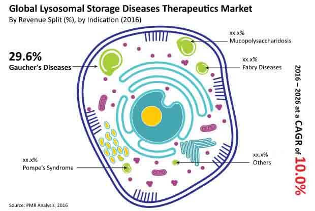 lysosomal storage diseases market