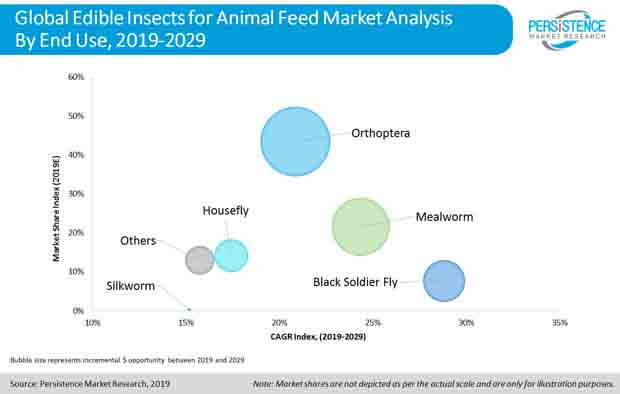edible insects for animal feed market