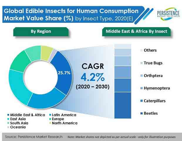edible insects for human consumption market