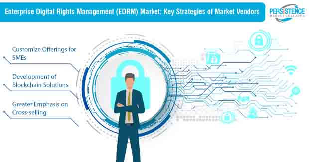enterprise digital rights management edrm strategies