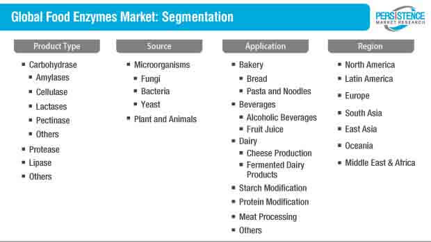 food enzymes market segmentation