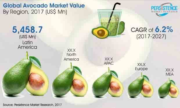 global avocado market