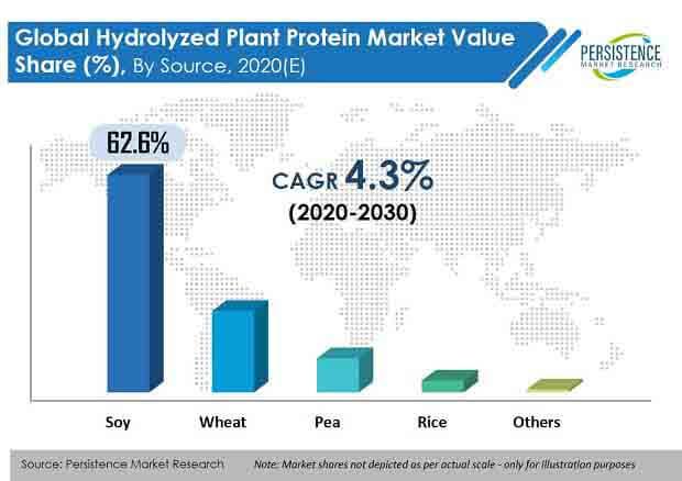 hydrolyzed plant protein market