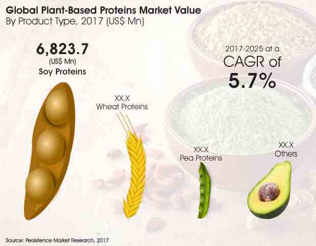 plant based proteins market