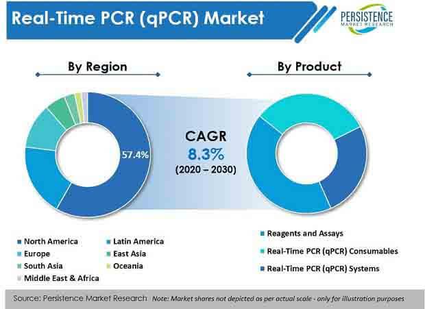 real time pcr qpcr market product