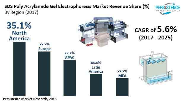 sds poly acrylamide gel electrophoresis market