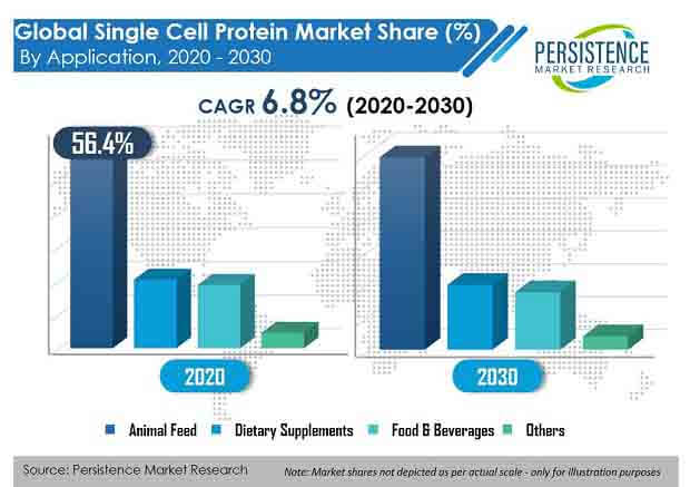 single cell protein market