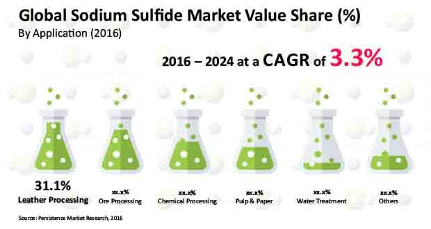 Sodium Sulfide Market - Global Industry Analysis, Sales, Trends